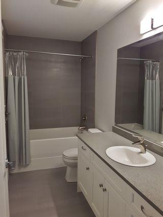 Photo 18: 10080 247B STREET in Maple Ridge: Albion House for sale : MLS®# R2104852