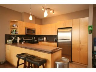 Photo 9: 223 69 SPRINGBOROUGH Court SW in Calgary: Springbank Hill Condo for sale : MLS®# C4002803