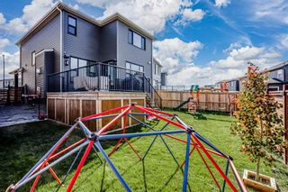 Photo 31: 29 Howse Terrace NE in Calgary: Livingston Detached for sale : MLS®# A1150423