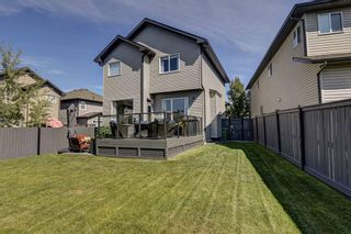 Photo 41: 17 Cranberry Lane SE in Calgary: Cranston Detached for sale : MLS®# A1142868