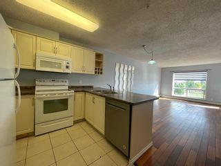 Photo 6: 302 17404 64 Avenue in Edmonton: Zone 20 Condo for sale : MLS®# E4254812