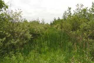 Photo 4: L11 Concession 3 Road in Brock: Beaverton Property for sale : MLS®# N2579342