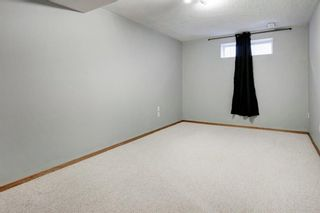 Photo 24: 66 Jensen Heights Place NE: Airdrie Detached for sale : MLS®# A1065376