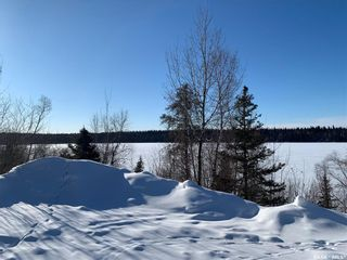 Photo 50: 20 Sunset Cove in Cowan Lake: Residential for sale : MLS®# SK841498