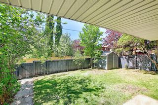 Photo 49: 43 Hawkwood Road NW in Calgary: Hawkwood Detached for sale : MLS®# A1115954