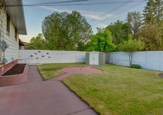 Photo 43: 23 CAMBRIAN Drive NW in Calgary: Rosemont Detached for sale : MLS®# A1120711