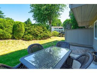 """Photo 28: 32 7640 BLOTT Street in Mission: Mission BC Townhouse for sale in """"Amber Lea"""" : MLS®# R2598322"""