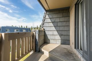 Photo 18: 2308 3115 51 Street SW in Calgary: Glenbrook Apartment for sale : MLS®# A1024636