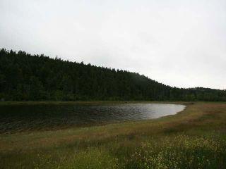 Photo 27: 1328 AC SCOTT ROAD in : Valleyview Lots/Acreage for sale (Kamloops)  : MLS®# 135387