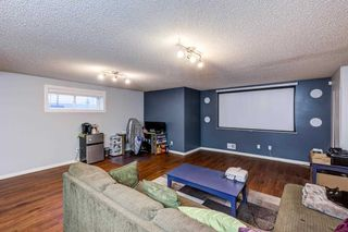 Photo 29: 233 MCCONACHIE Drive in Edmonton: Zone 03 House for sale : MLS®# E4241233