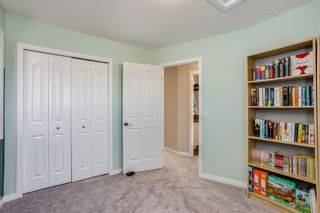 Photo 19: 191 Cranford Close in Calgary: Cranston Detached for sale : MLS®# A1085640