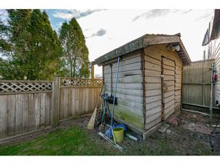 Photo 35: 12022 230 Street in Maple Ridge: East Central House for sale : MLS®# R2539410