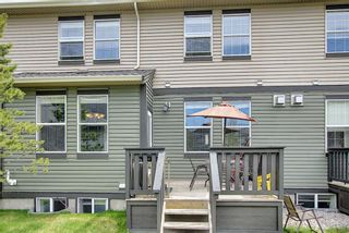 Photo 45: 3803 1001 8 Street: Airdrie Row/Townhouse for sale : MLS®# A1105310
