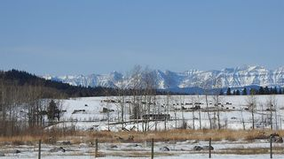 Photo 36: 100 160289 Highway 549 W: Rural Foothills County Detached for sale : MLS®# A1080701