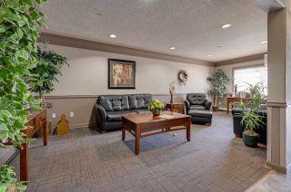 Photo 32: 448 16311 95 Street in Edmonton: Zone 28 Condo for sale : MLS®# E4243249