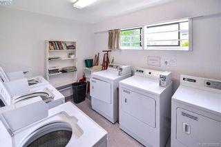 Photo 6: 210 1975 LEE Ave in VICTORIA: Vi Jubilee Condo for sale (Victoria)  : MLS®# 789504