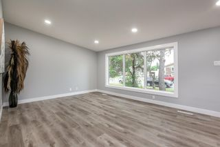 Photo 12: 9151 150 Street in Edmonton: Zone 22 House for sale : MLS®# E4250068