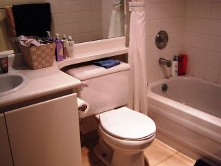 """Photo 7: 1205 1188 RICHARDS Street in Vancouver: Downtown VW Condo for sale in """"PARK PLAZA"""" (Vancouver West)  : MLS®# V822005"""