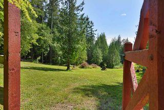 Photo 28: 1947 CRYSTAL Crescent: Roberts Creek House for sale (Sunshine Coast)  : MLS®# R2473206
