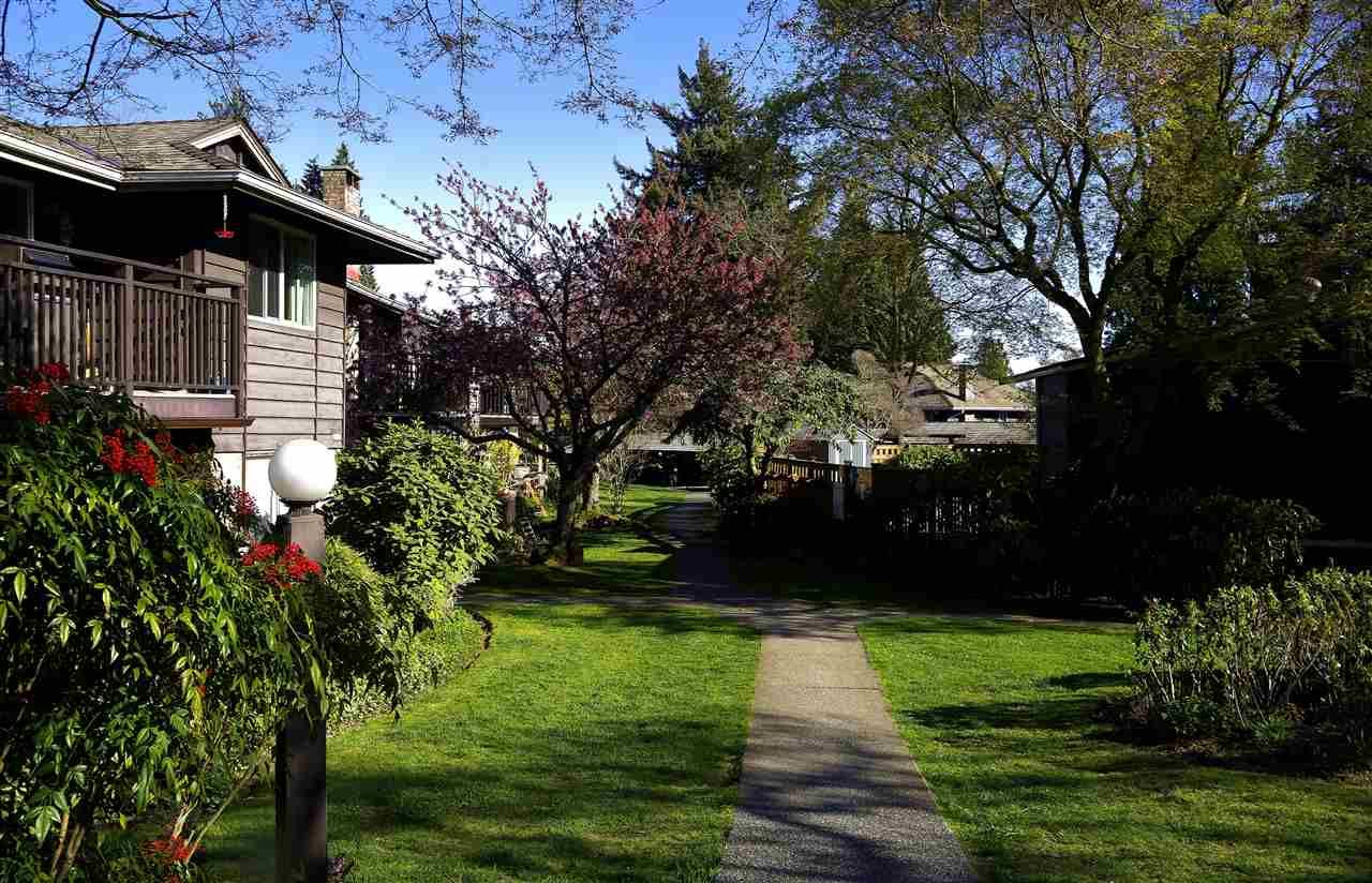 """Main Photo: 206 555 W 28TH Street in North Vancouver: Upper Lonsdale Condo for sale in """"Cedar Brooke Village Gardens"""" : MLS®# R2555478"""