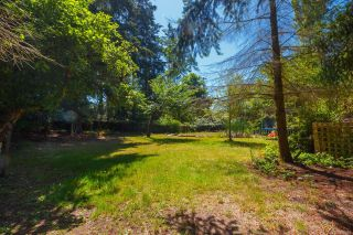 Photo 7: 4781 Cordova Bay Rd in : SE Cordova Bay House for sale (Saanich East)  : MLS®# 850897