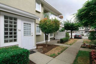 """Photo 19: 36 23560 119 Avenue in Maple Ridge: Cottonwood MR Townhouse for sale in """"HOLLYHOCK"""" : MLS®# R2613687"""