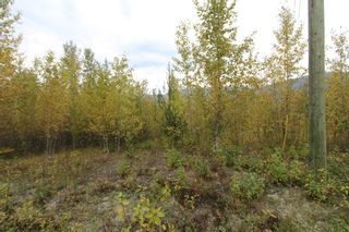 Photo 5: Lot 81 Sunset Drive: Eagle Bay Land Only for sale (Shuswap)  : MLS®# 10186644