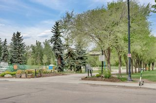 Photo 48: 401 680 PRINCETON Way SW in Calgary: Eau Claire Apartment for sale : MLS®# C4301312