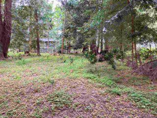 Photo 8: LOT 19 FAWN Road in Halfmoon Bay: Halfmn Bay Secret Cv Redroofs Land for sale (Sunshine Coast)  : MLS®# R2580895