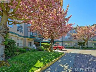 Photo 17: 310 1485 Garnet Rd in VICTORIA: SE Cedar Hill Condo for sale (Saanich East)  : MLS®# 757974
