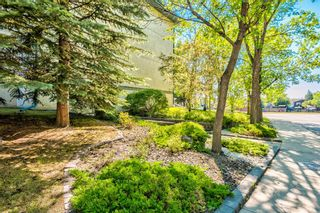 Photo 24: 114 11 Dover Point SE in Calgary: Dover Apartment for sale : MLS®# A1125915