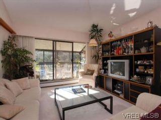 Photo 4: 416 1009 McKenzie Ave in VICTORIA: SE Quadra Condo for sale (Saanich East)  : MLS®# 553135