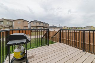 Photo 48: 7647 CREIGHTON Place in Edmonton: Zone 55 House for sale : MLS®# E4262314