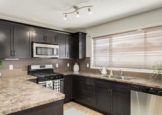 Photo 23: 189 COPPERPOND Road SE in Calgary: Copperfield Detached for sale : MLS®# A1091868