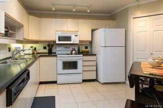 Photo 10: 304 3900 Shelbourne St in VICTORIA: SE Cedar Hill Condo for sale (Saanich East)  : MLS®# 768174