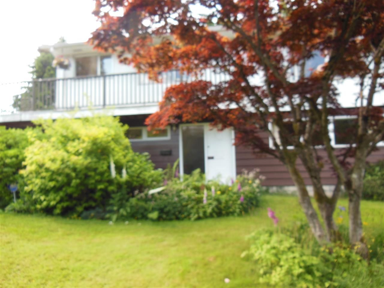 Main Photo: 1271 BARLYNN Crescent in North Vancouver: Westlynn House for sale : MLS®# R2281128