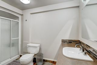 Photo 24: 3811 43 Street SW in Calgary: Glenbrook Semi Detached for sale : MLS®# C4267535