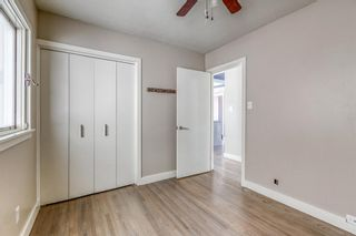 Photo 18: 531 99 Avenue SE in Calgary: Willow Park Detached for sale : MLS®# A1019885