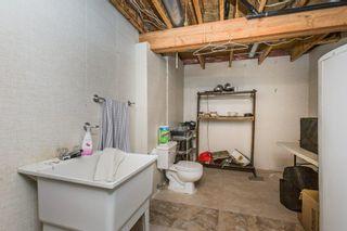Photo 31: 71 DEER RIDGE Drive: St. Albert House for sale : MLS®# E4261466
