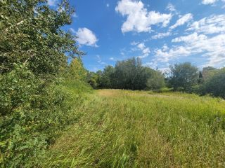 Photo 4: HWY 29 RR 175: Rural Lamont County Rural Land/Vacant Lot for sale : MLS®# E4260440