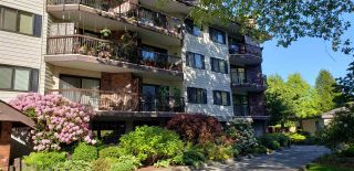"""Photo 22: 212 10160 RYAN Road in Richmond: South Arm Condo for sale in """"STORNOWAY"""" : MLS®# R2581547"""