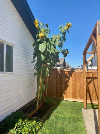 Photo 25: 724 SECORD Boulevard in Edmonton: Zone 58 House for sale : MLS®# E4236765
