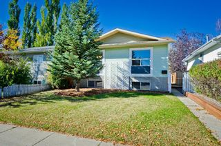 Photo 41: 35 GREEN MEADOW Crescent: Strathmore Detached for sale : MLS®# A1038478