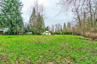 Photo 13: 20838 LOUIE Crescent in Langley: Walnut Grove House for sale : MLS®# R2391632