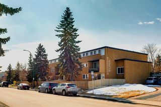 Photo 2: 211 7007 4A Street SW in Calgary: Kingsland Apartment for sale : MLS®# A1086391