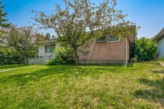 Photo 2: 1193 Northmount Drive NW in Calgary: Brentwood Detached for sale : MLS®# A1128938