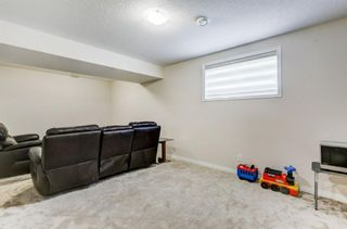 Photo 24: 224 Osborne Green SW: Airdrie Detached for sale : MLS®# A1097874