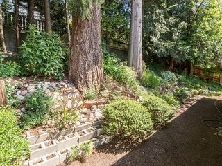 Photo 12: 8270 Sheaves Road in North Delta: Nordel House for sale (N. Delta)  : MLS®# R2062401