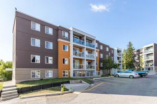 Photo 26: 401C 4455 Greenview Drive NE in Calgary: Greenview Apartment for sale : MLS®# A1052674
