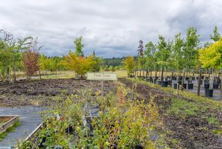 Photo 11: 3125 Piercy Ave in : CV Courtenay City Land for sale (Comox Valley)  : MLS®# 866873